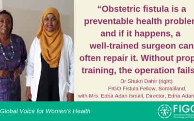 In Somaliland, the first female surgeon rebuilds lives